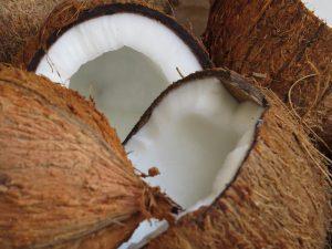 Noix de Coco 2 YVA Océan Indien